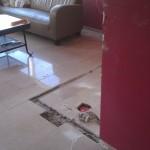 Reparatie trani vloer
